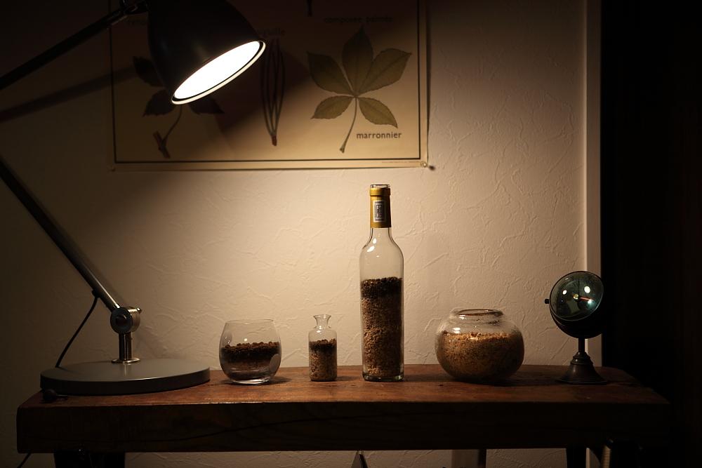 ボトルきのこリウム